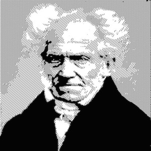 NL 22 Arthur Schopenhauer The Brilliant Beast Blog
