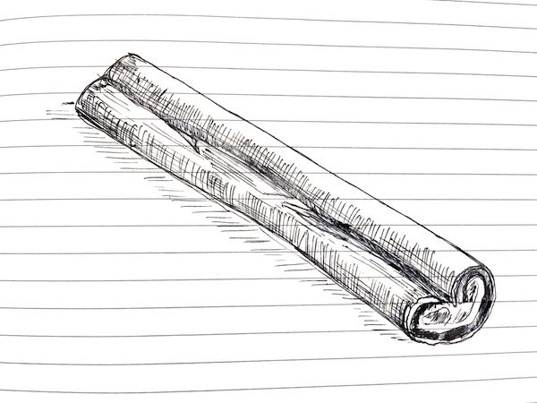 NL 46 Cinnamon Stick Sketch The Brilliant Beast Blog.png