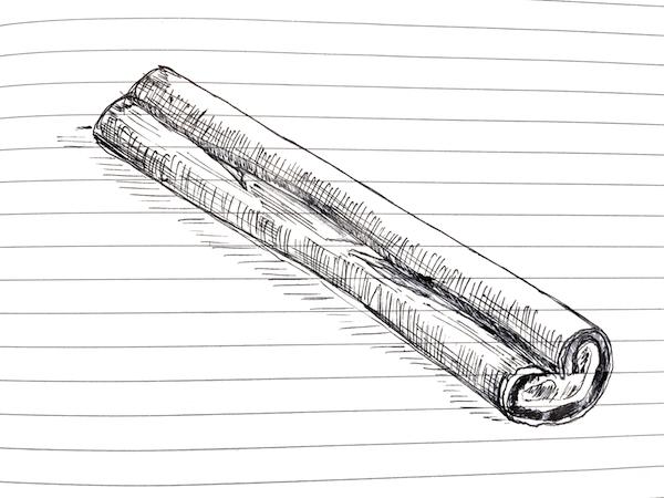 NL 46 Cinnamon Stick Sketch The Brilliant Beast Blog.png
